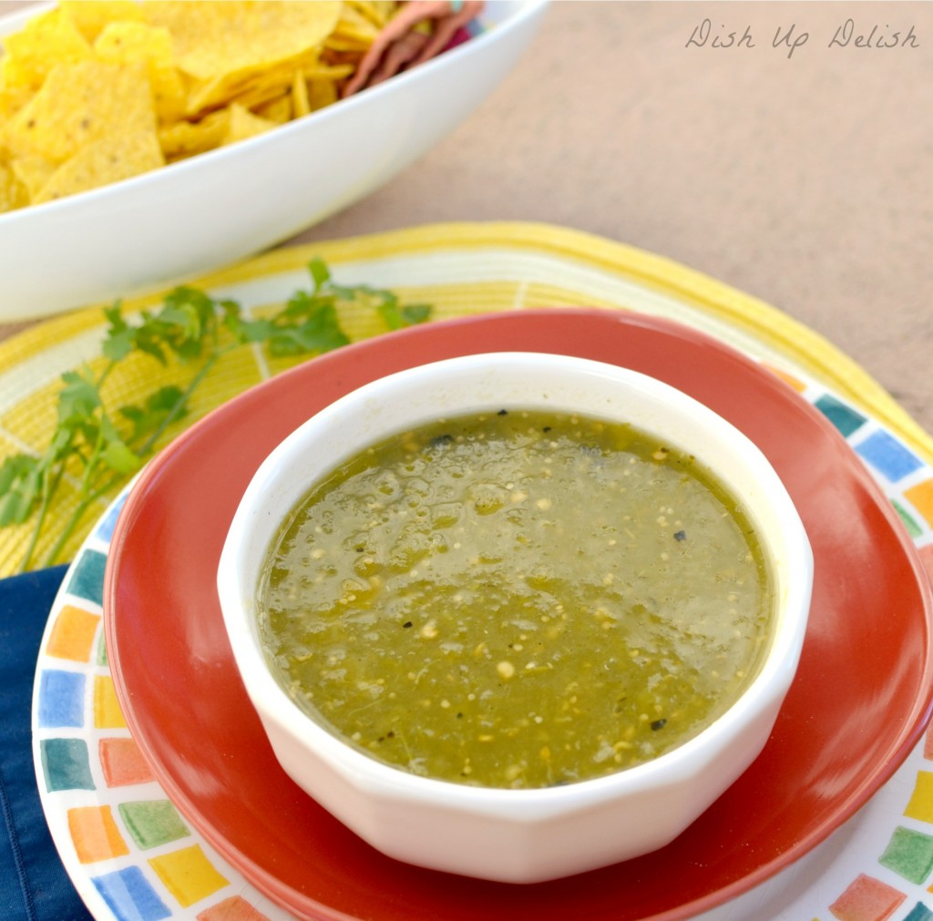 Salsa Verde from Dish Up Delish