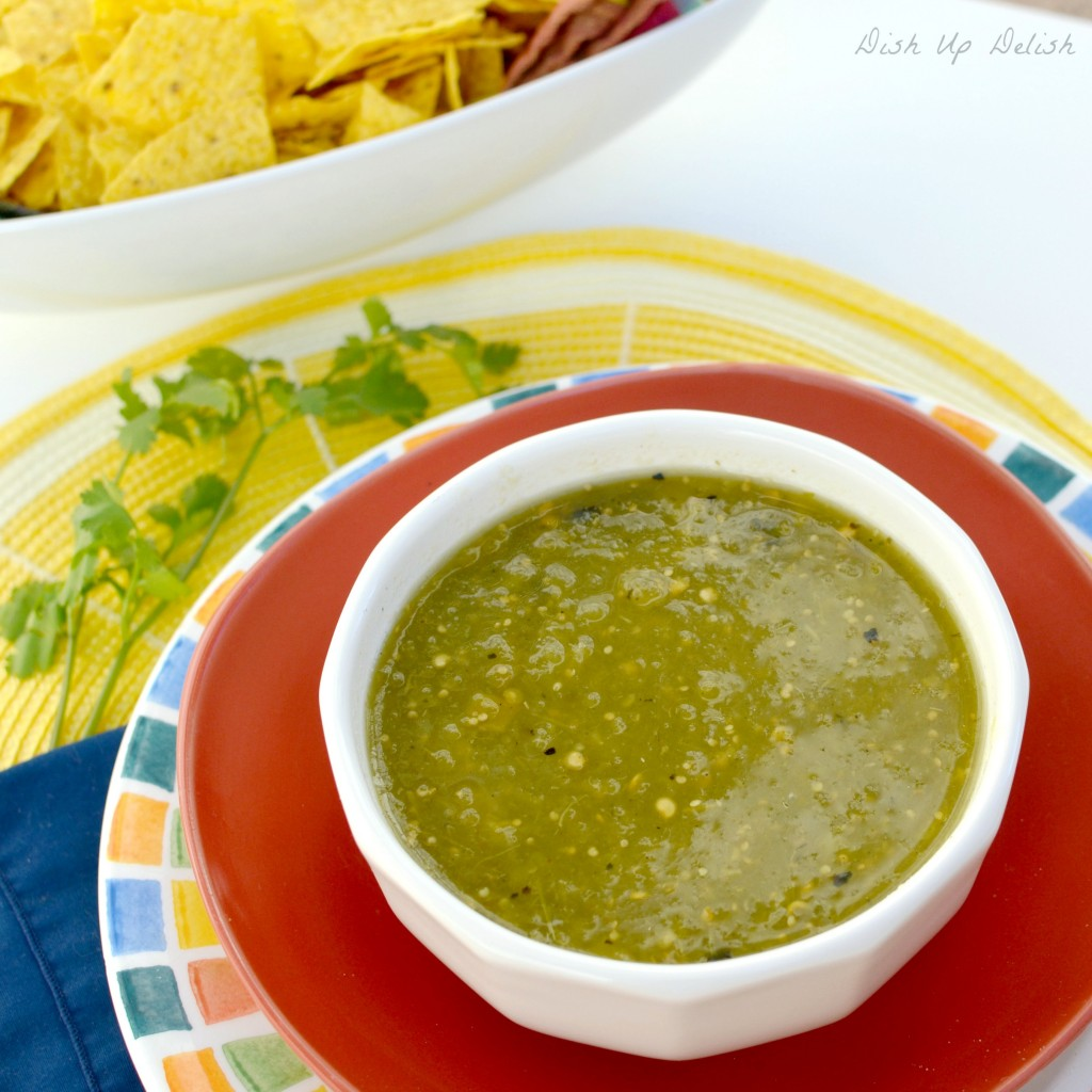 Salsa Verde on Dish Up Delish