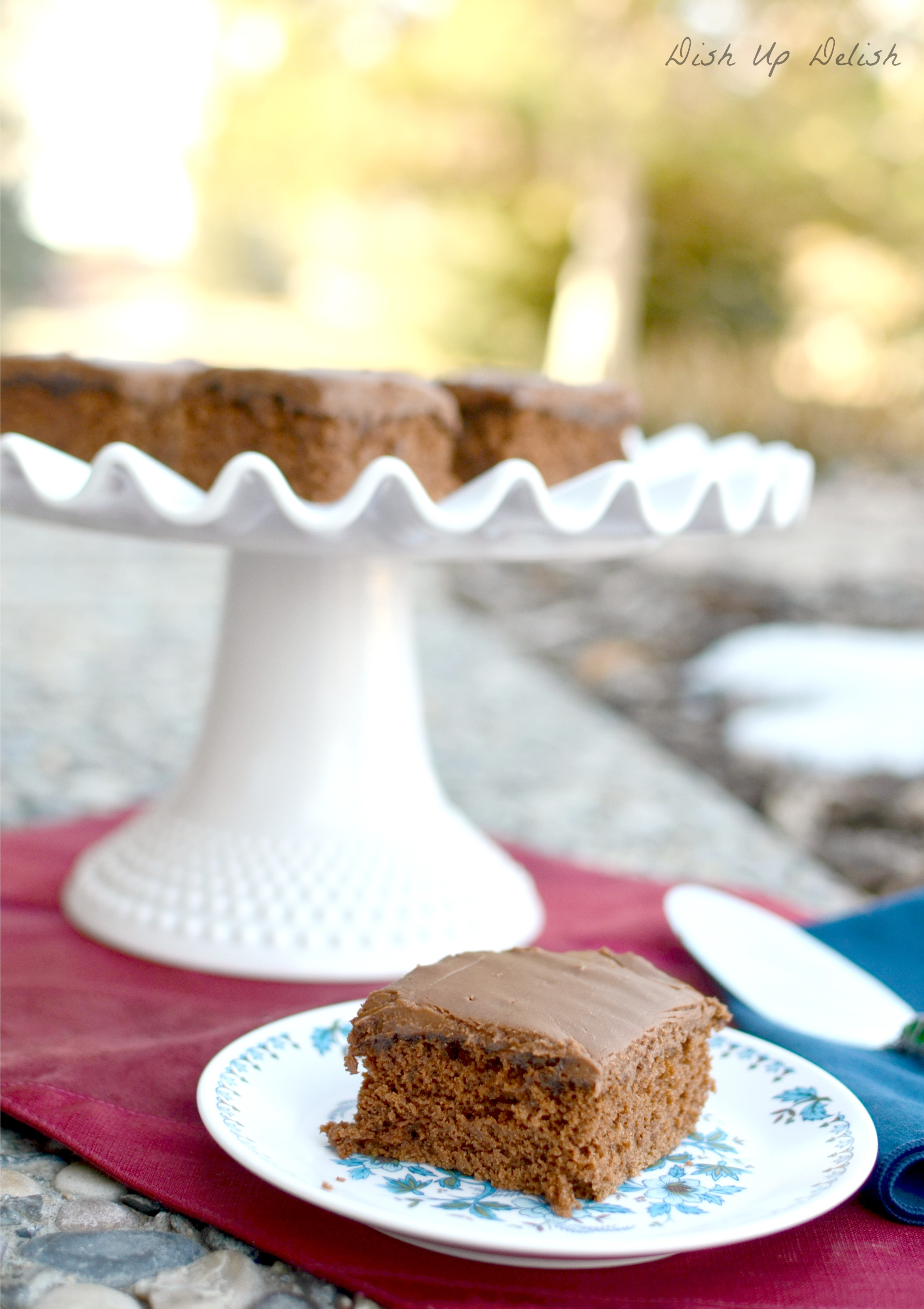 Texas Fudge Cake : Dish Up Delish